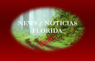 n-n-blank-9-FLORIDA-NOTICIAS