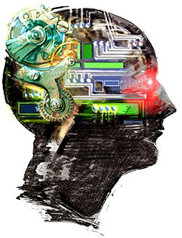 brain2f